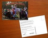 Bewig - Postkartendesign